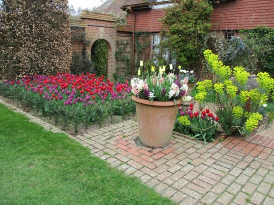 Tulips and other flowers at East Ruston Vicarage Gardens