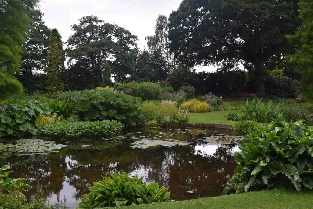 The Water Gardens at Beth Chatto Gardens in Colchester