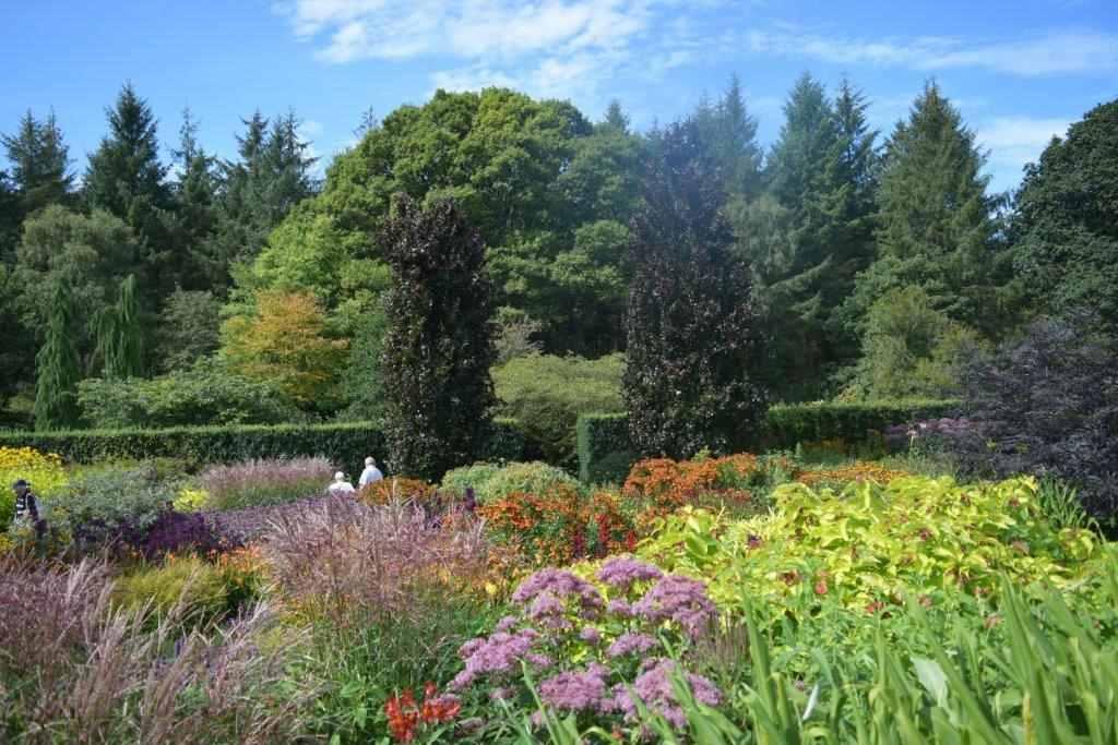Herbaceous borders at RHS Rosemoor