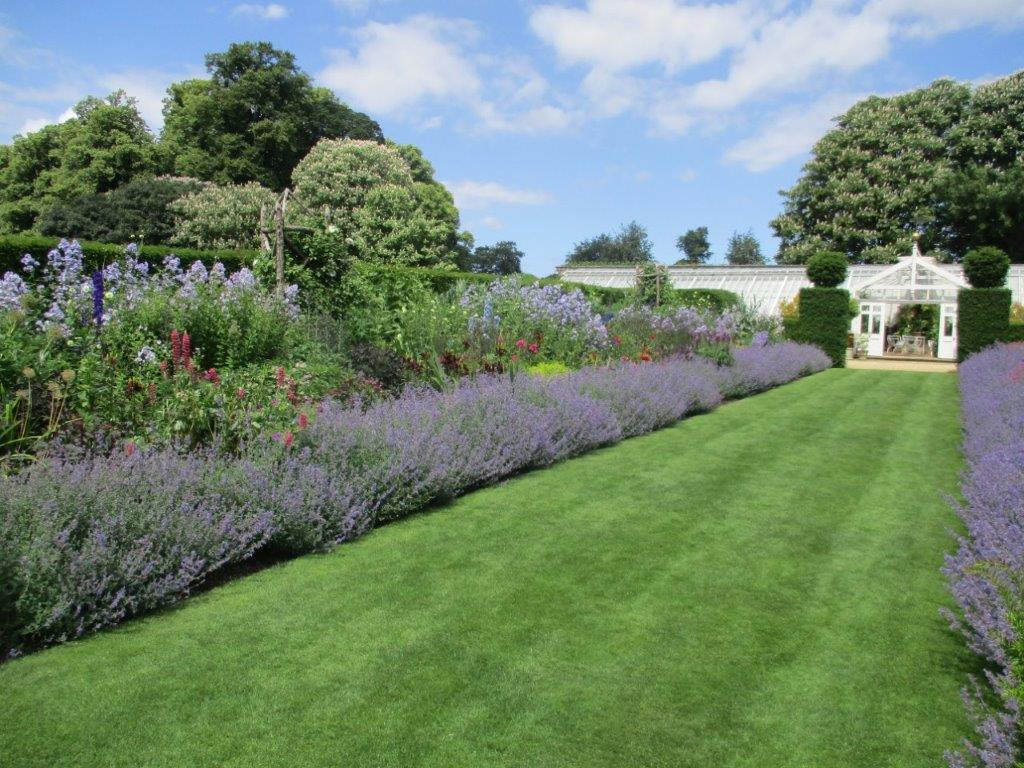 Houghton showing Nepetas lining the generous herbaceous borders with the large glass house at the end