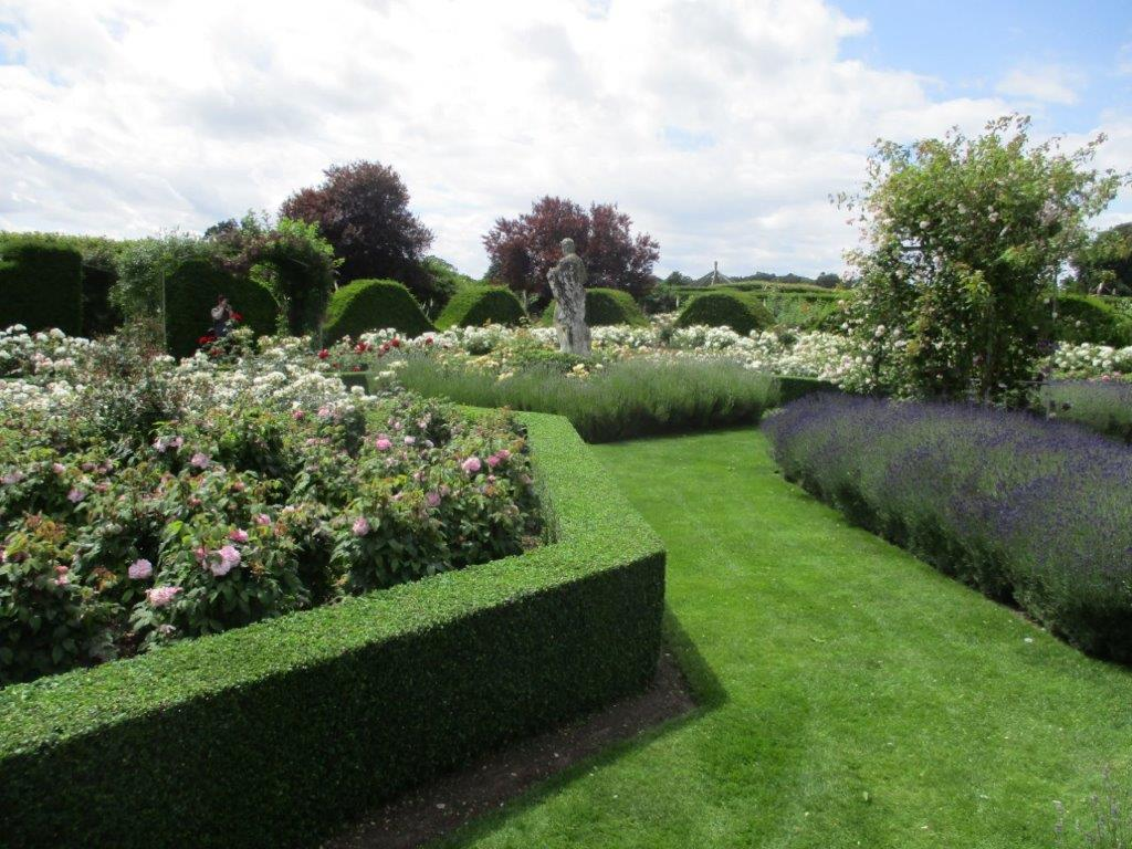 The magnificent Rose Garden surrounded by wide and wavy yew hedges