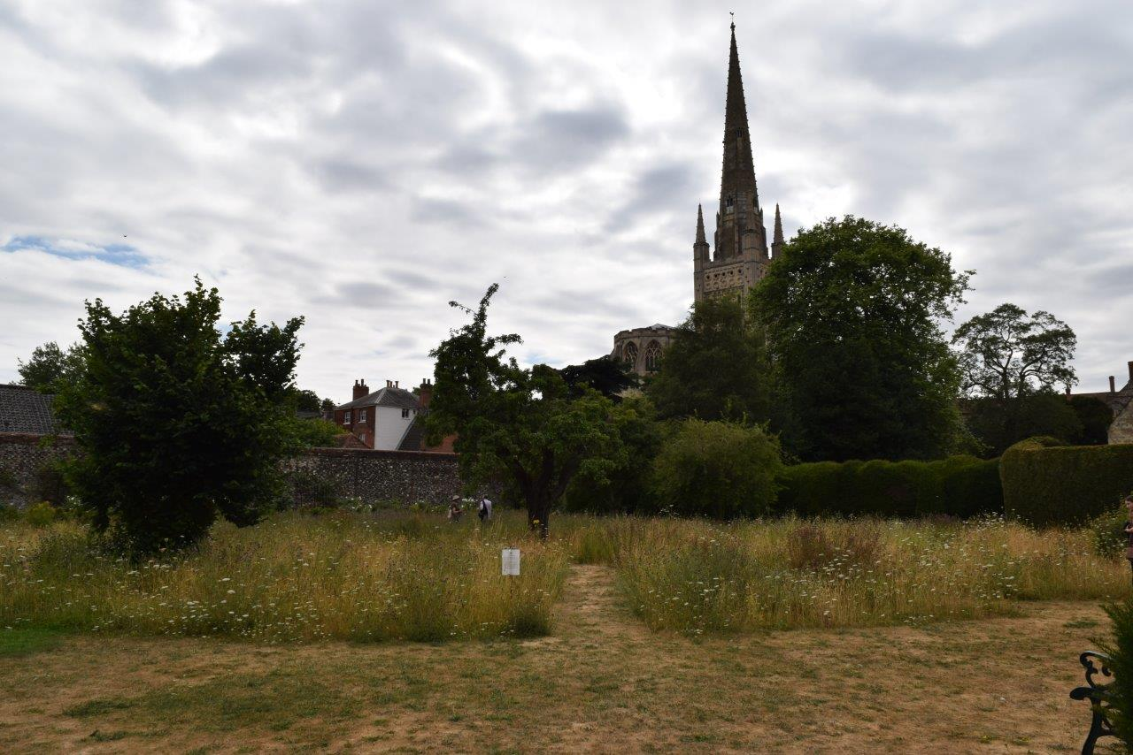 The Bishop's Garden, Norwich showing the Cathedral