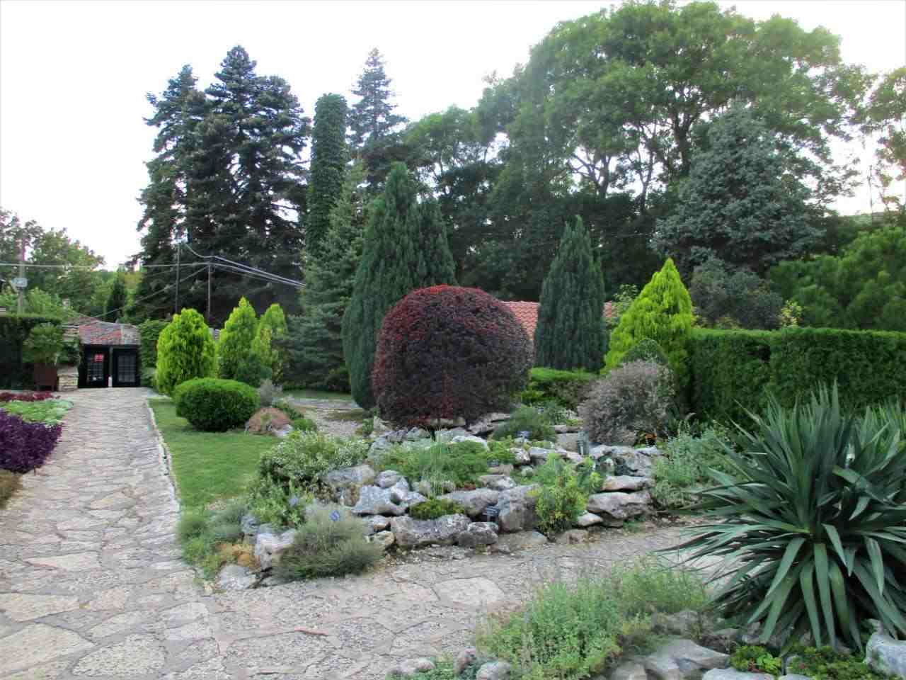 Photo of the rockery garden in Balchik showing phormium and berberis