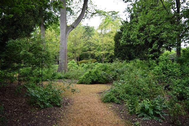 wild-rose-garden-blickling-gardens