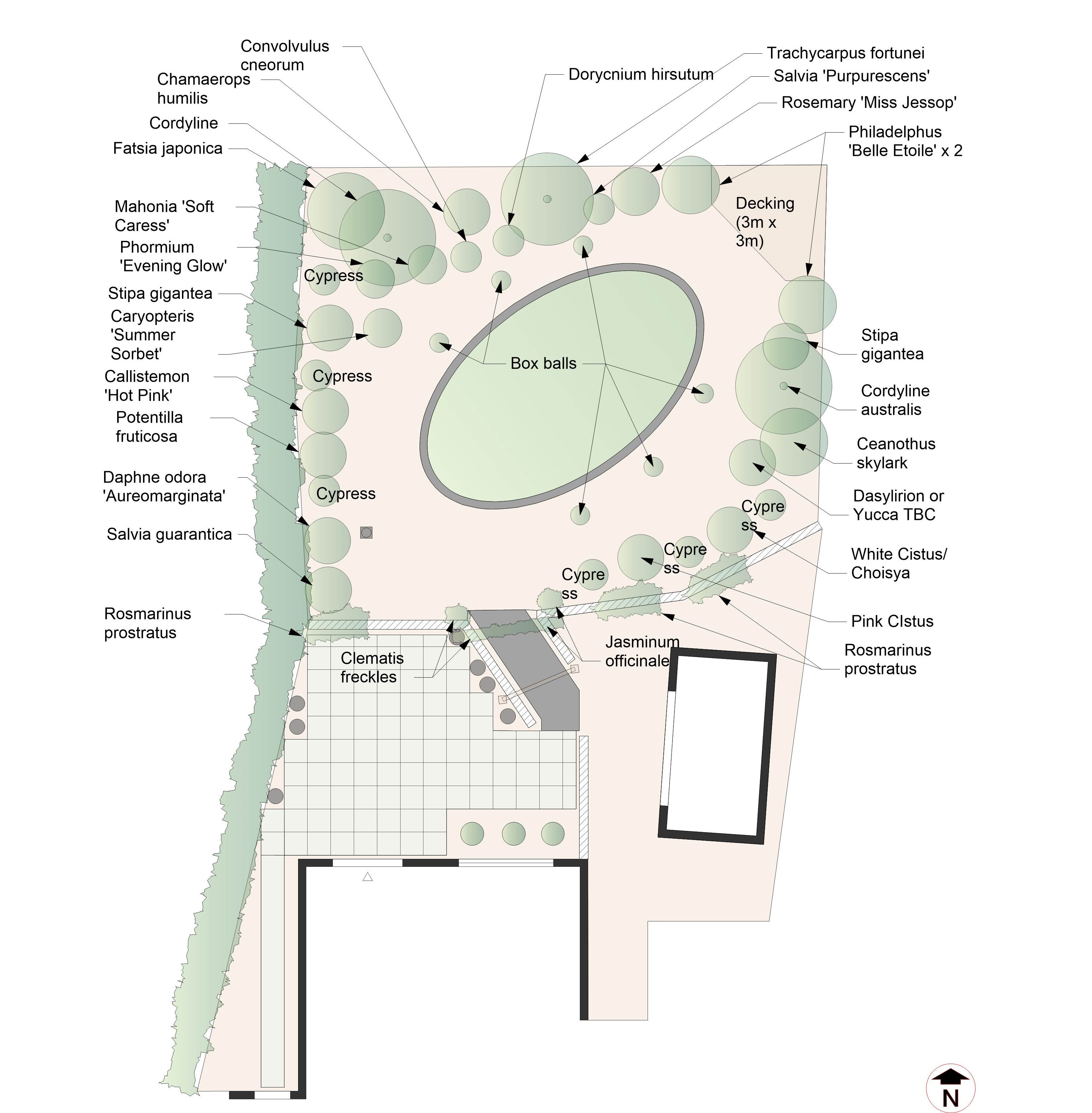 Garden Design and Build - Proposed Planting Plan