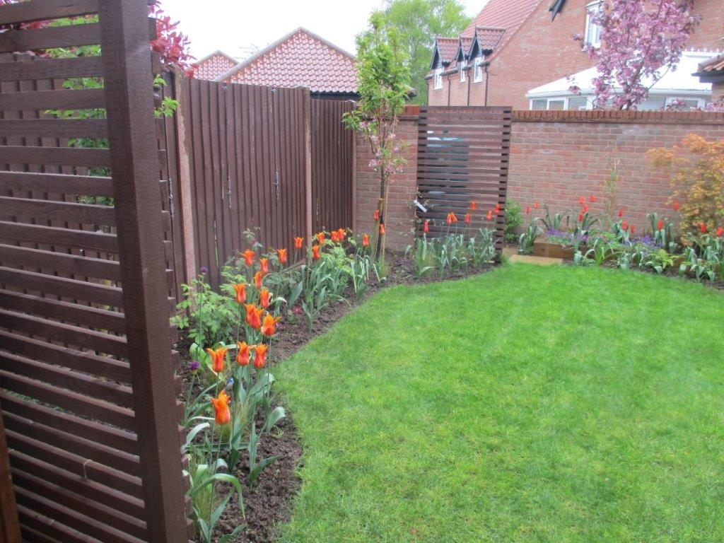 View of back garden towards oil tank after garden design and build in Spring