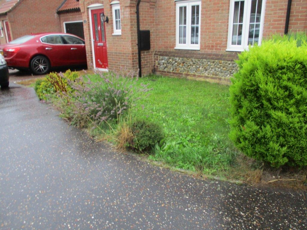 Front garden before makeover