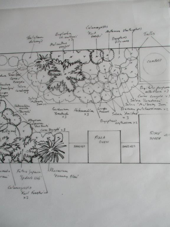 Proposed planting layout at the front of the garden