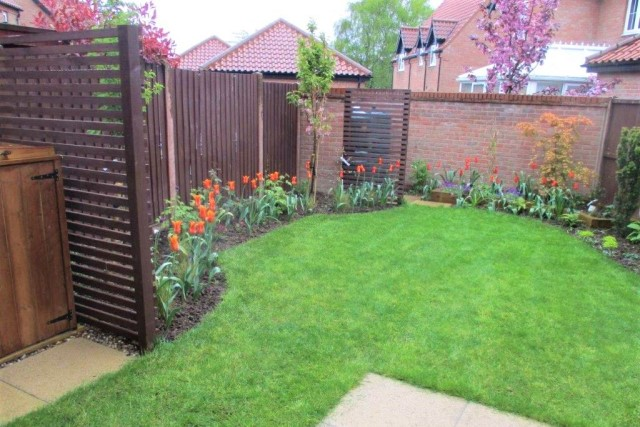 Small garden design in norfolk
